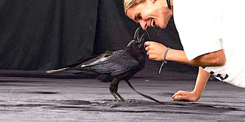 Animal Actor Craw