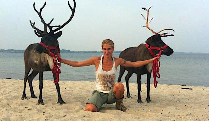 Animal Actors Reindeers