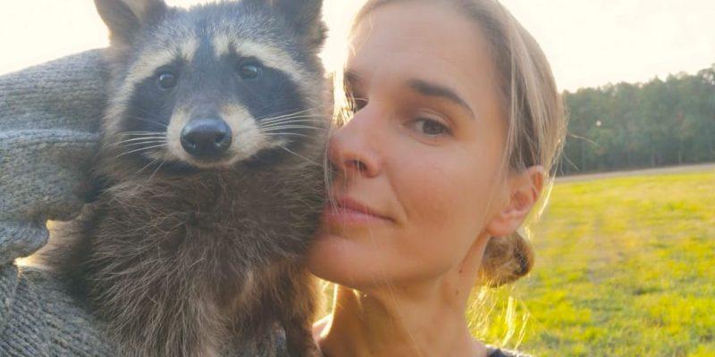 Animal Actor Raccoon